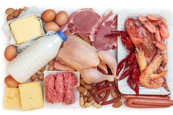 Diet Tinggi Protein Perlukah Portal Myhealth