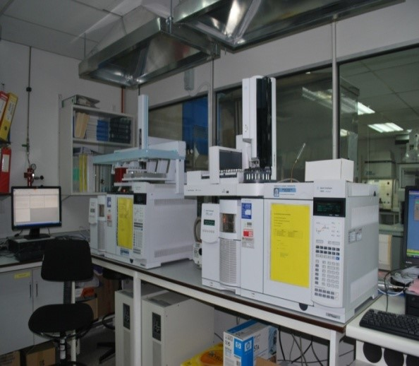 Gas Chromatography Mass Spectrometry