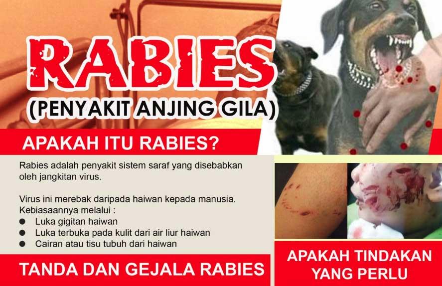 rotavirus sakit apa