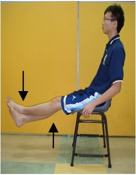 Strengthening Exercise (without resistance bag)