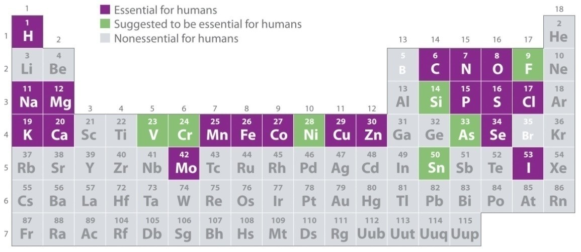 Trace Elements in Periodic Table